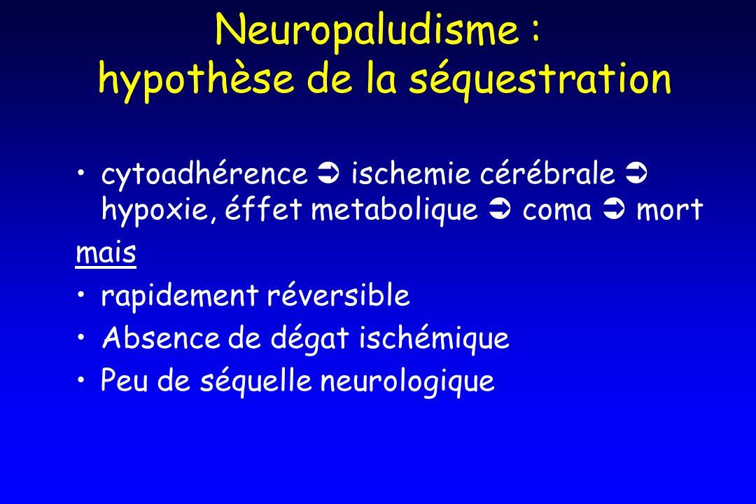 Neuropaludisme : hypothèse de la séquestration