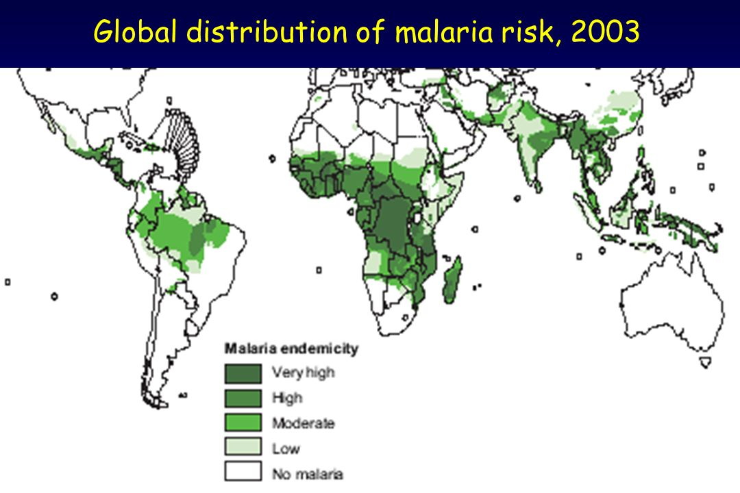 Global distribution of malaria risk, 2003