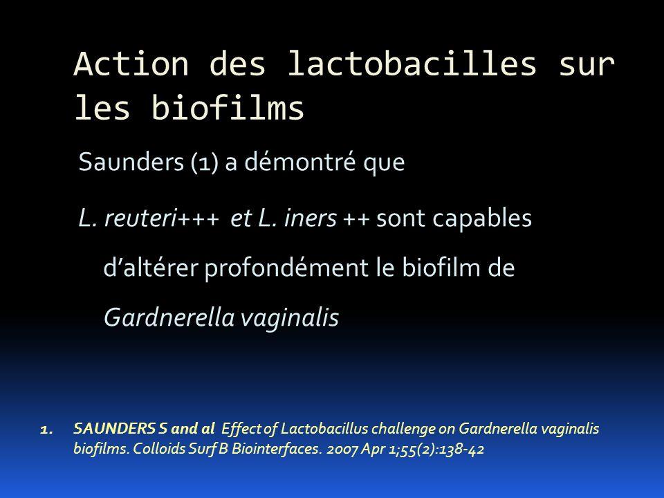 Action des lactobacilles sur les biofilms