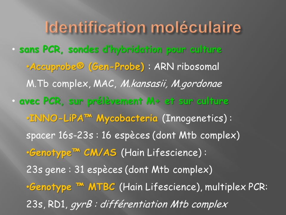 Identification moléculaire