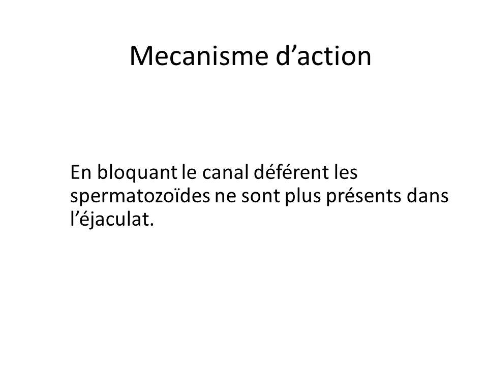 Mecanisme d'action En bloquant le canal déférent les spermatozoïdes ne sont plus présents dans l'éjaculat.