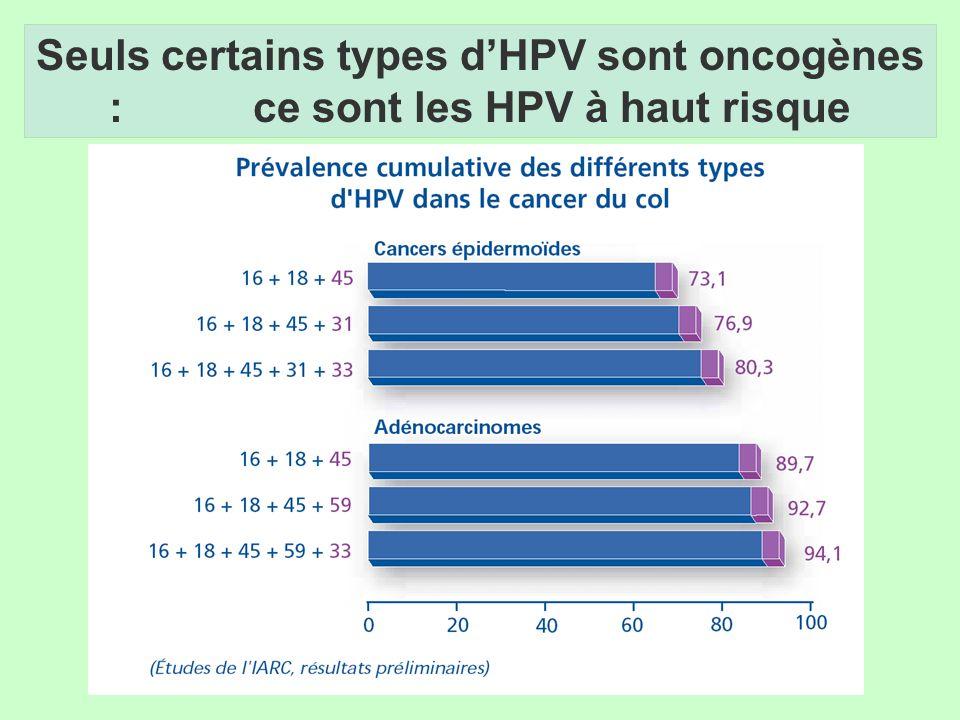 Seuls certains types d'HPV sont oncogènes : ce sont les HPV à haut risque