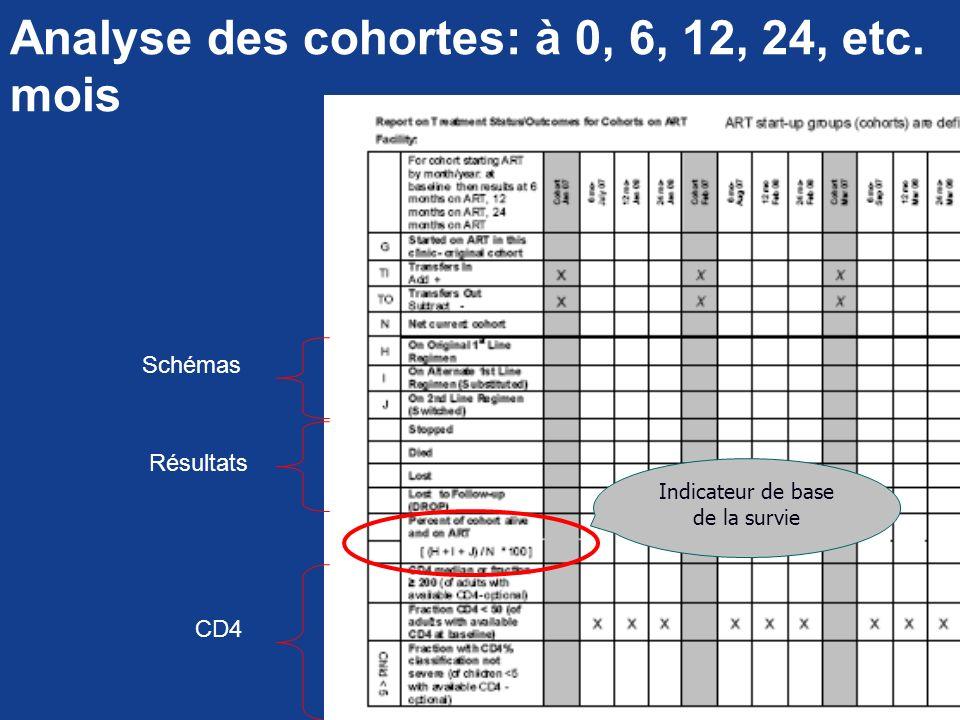 Analyse des cohortes: à 0, 6, 12, 24, etc. mois