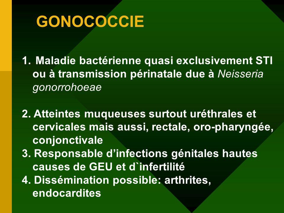 GONOCOCCIE Maladie bactérienne quasi exclusivement STI ou à transmission périnatale due à Neisseria gonorrohoeae.