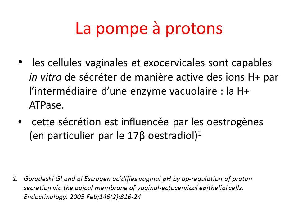 La pompe à protons