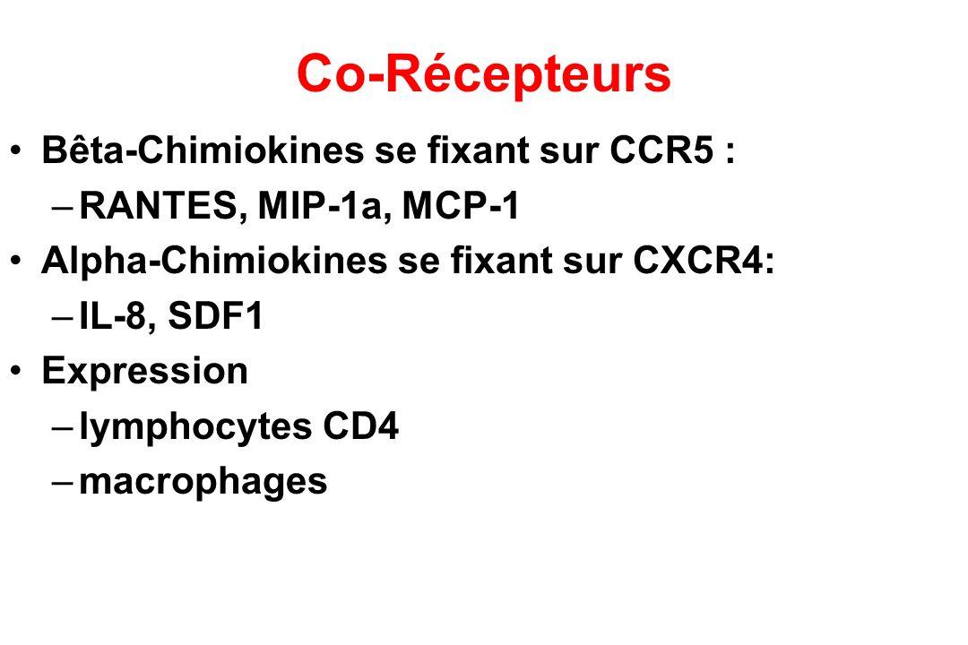 Co-Récepteurs Bêta-Chimiokines se fixant sur CCR5 :