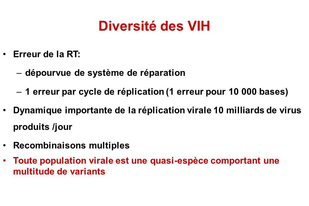 Diversité des VIH Erreur de la RT: dépourvue de système de réparation