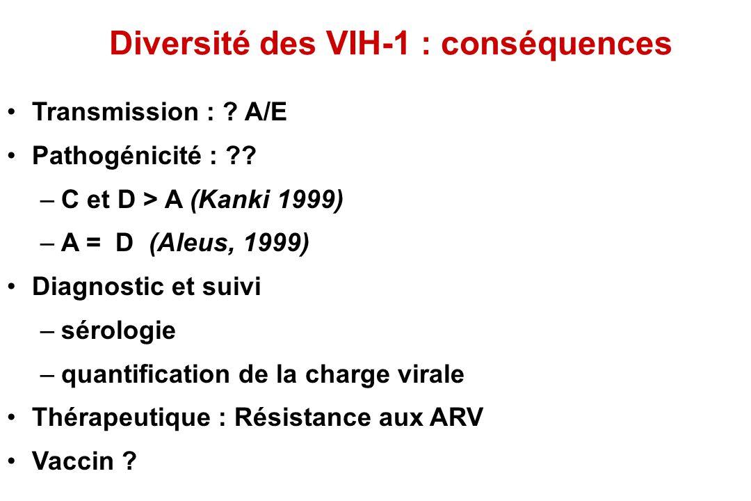 Diversité des VIH-1 : conséquences