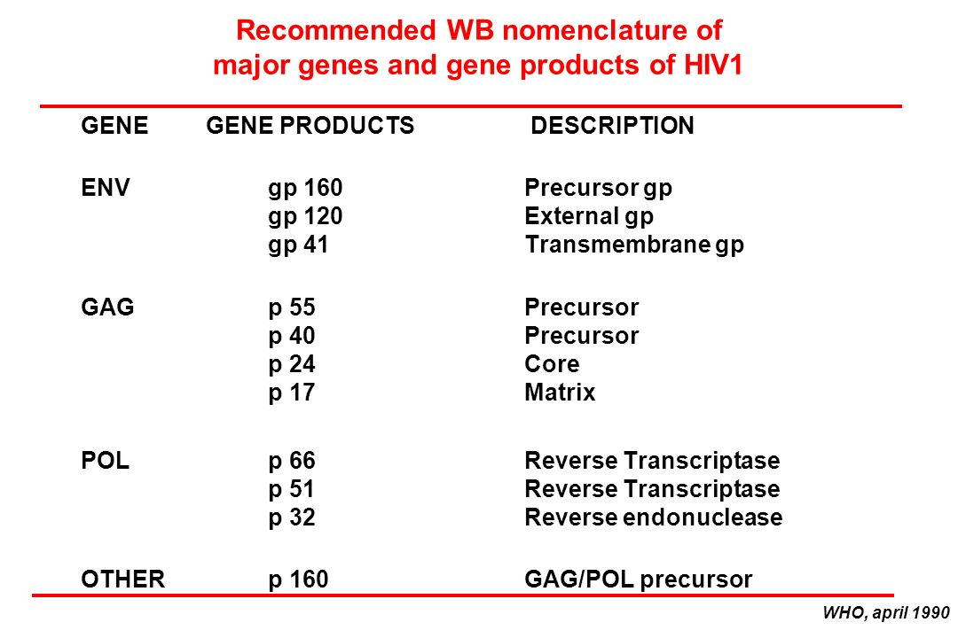 Recommended WB nomenclature of major genes and gene products of HIV1