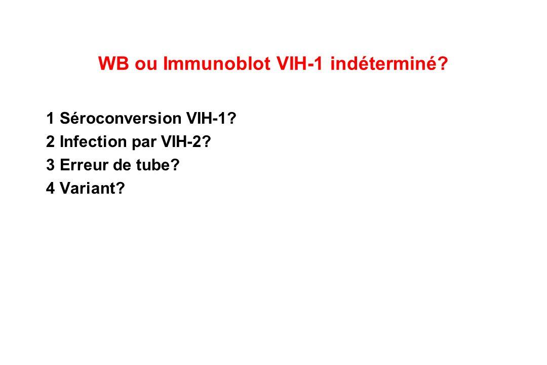 WB ou Immunoblot VIH-1 indéterminé