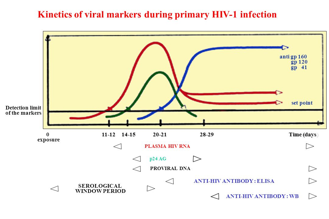Detection limit of the markers