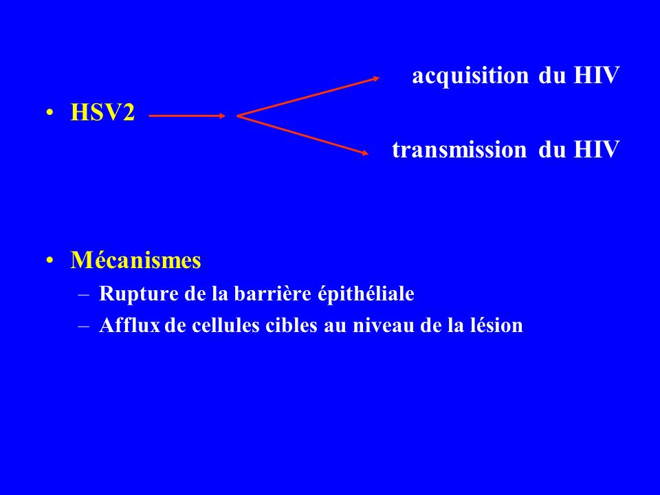 acquisition du HIV HSV2 transmission du HIV Mécanismes