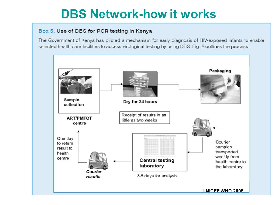 DBS Network-how it works