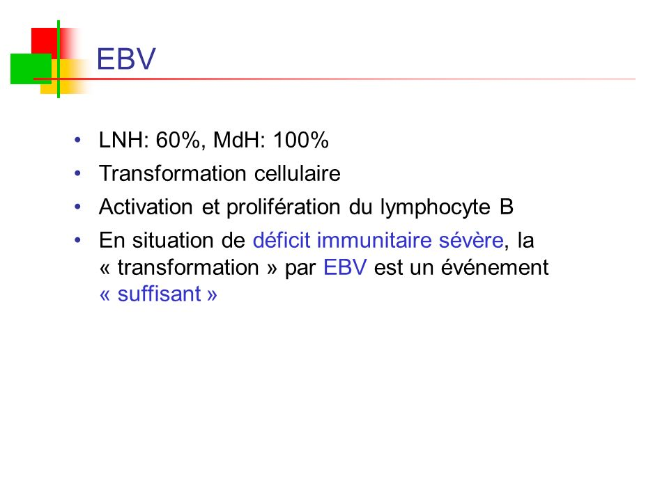 EBV LNH: 60%, MdH: 100% Transformation cellulaire
