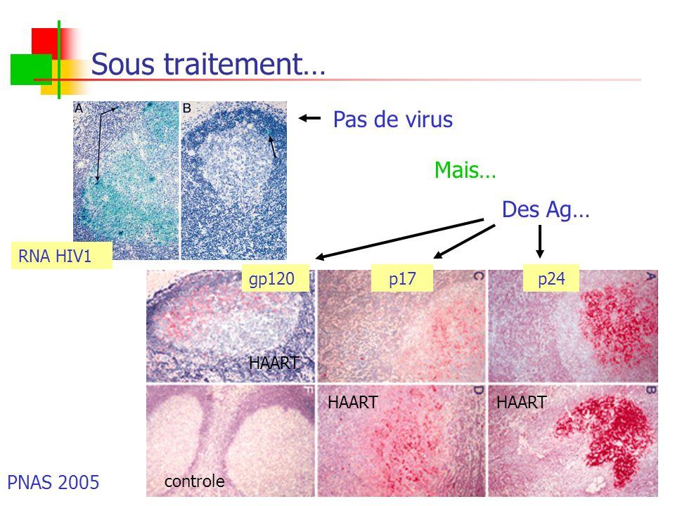 Sous traitement… Pas de virus Mais… Des Ag… PNAS 2005 RNA HIV1 gp120