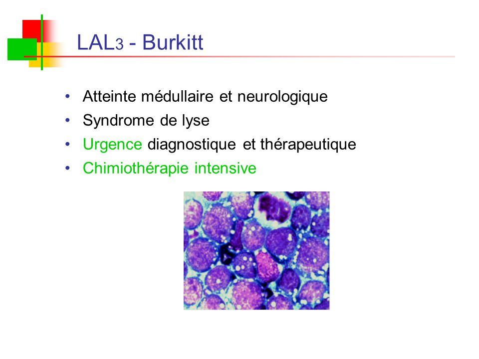 LAL3 - Burkitt Atteinte médullaire et neurologique Syndrome de lyse