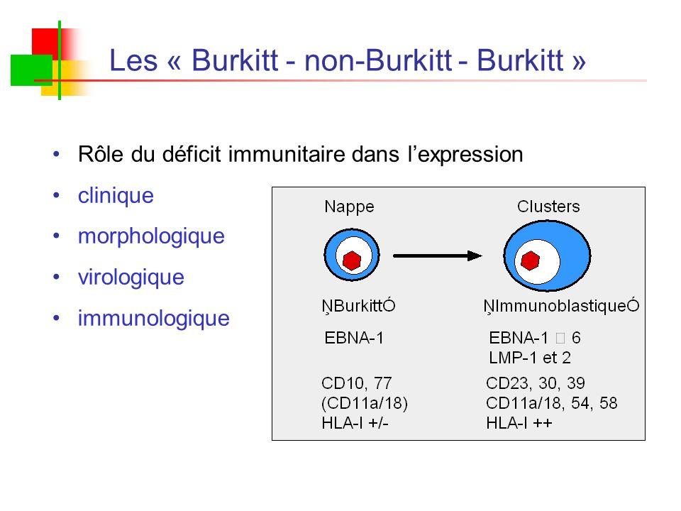 Les « Burkitt - non-Burkitt - Burkitt »