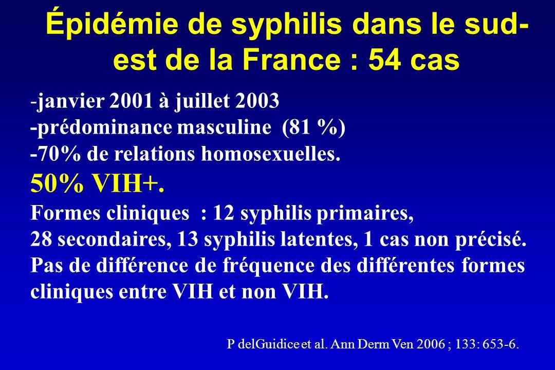 Épidémie de syphilis dans le sud-est de la France : 54 cas