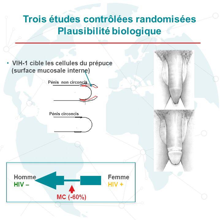 Trois études contrôlées randomisées Plausibilité biologique