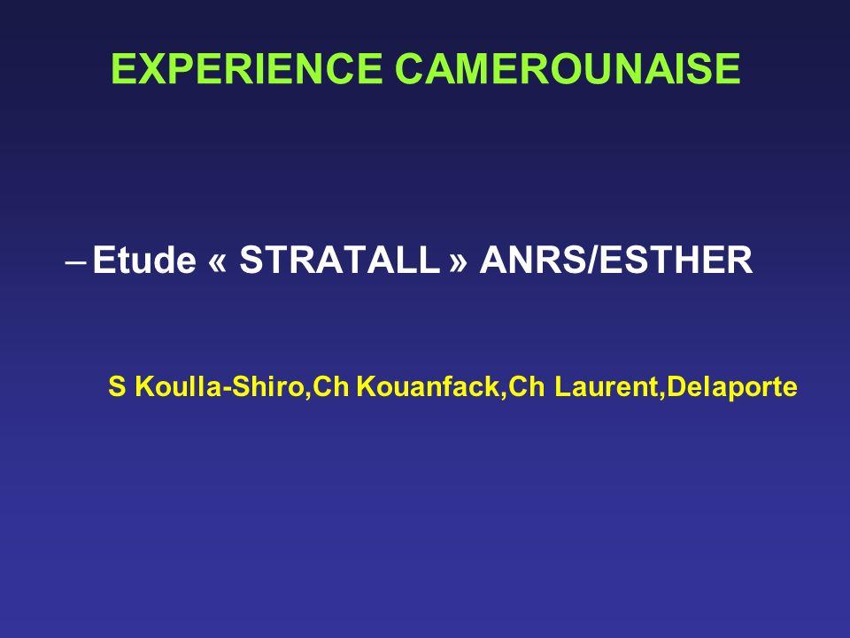 EXPERIENCE CAMEROUNAISE