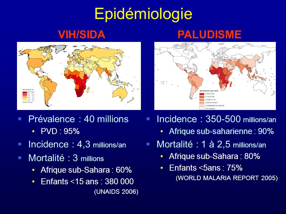 Epidémiologie VIH/SIDA PALUDISME Prévalence : 40 millions