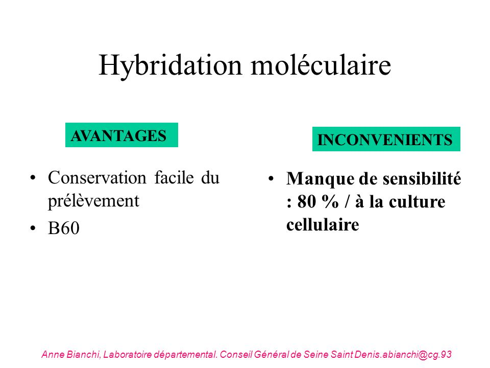 Hybridation moléculaire