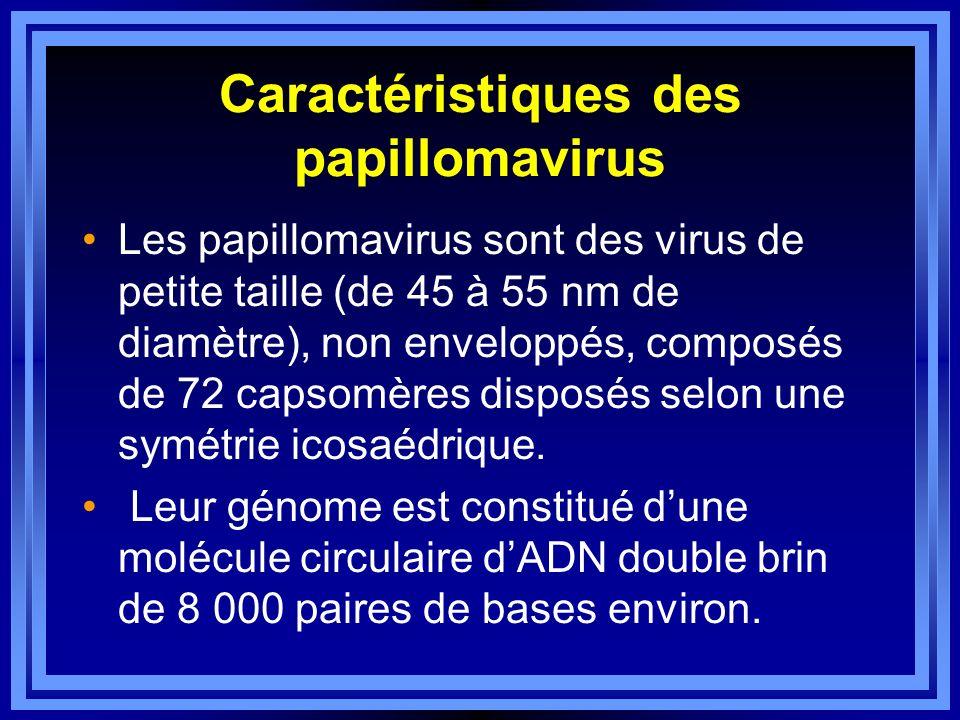 Caractéristiques des papillomavirus