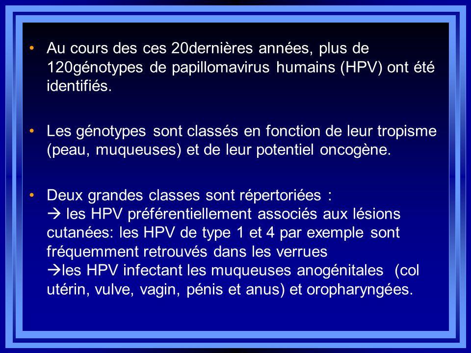 Au cours des ces 20dernières années, plus de 120génotypes de papillomavirus humains (HPV) ont été identifiés.