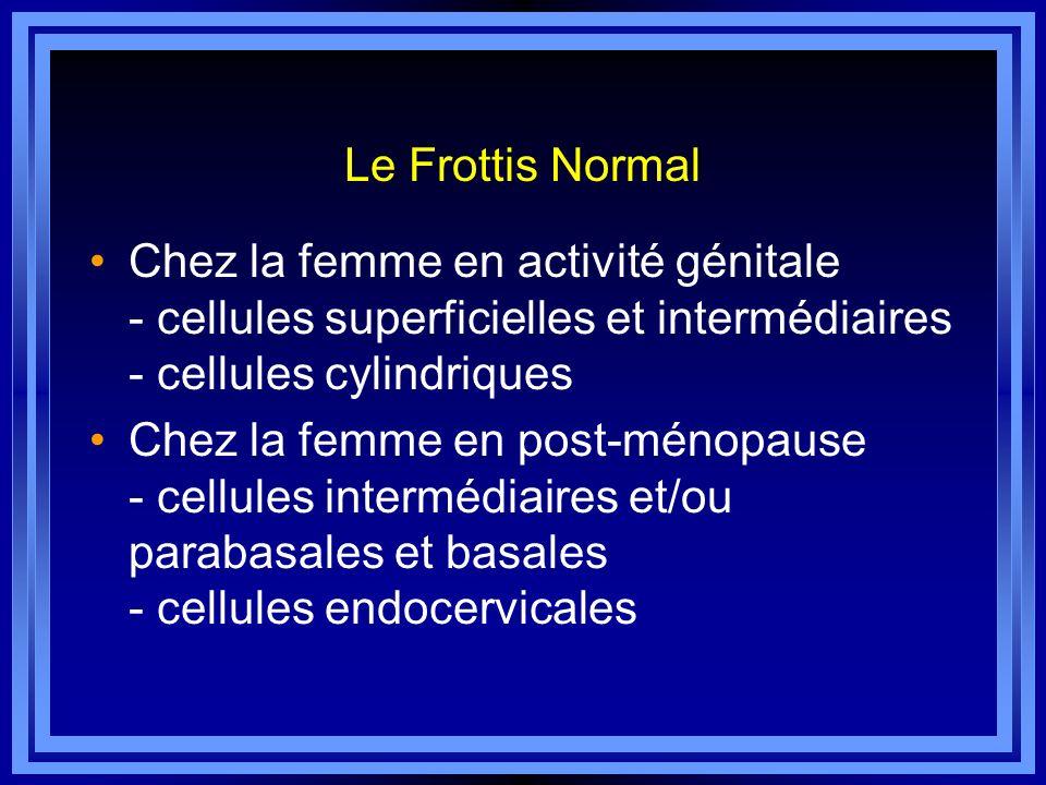 Le Frottis NormalChez la femme en activité génitale - cellules superficielles et intermédiaires - cellules cylindriques.