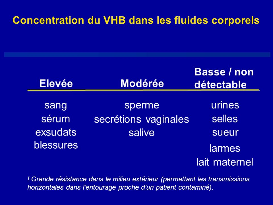 Concentration du VHB dans les fluides corporels