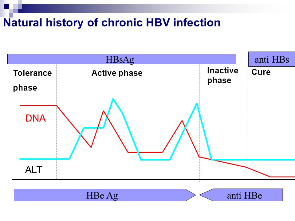 Natural history of chronic HBV infection