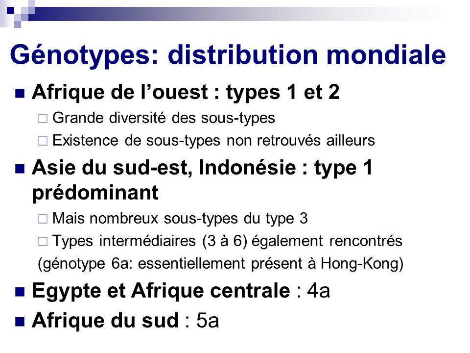 Génotypes: distribution mondiale
