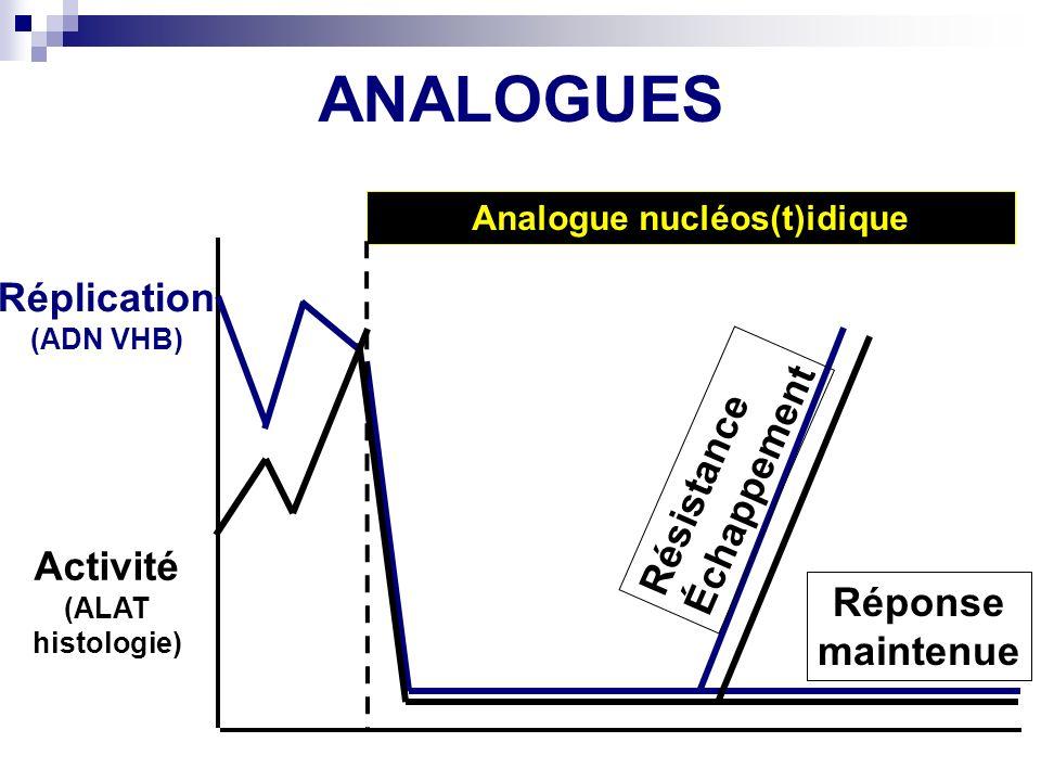 Analogue nucléos(t)idique