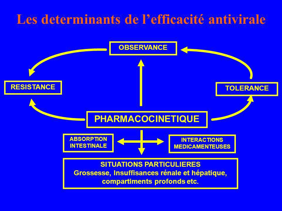 Les determinants de l'efficacité antivirale