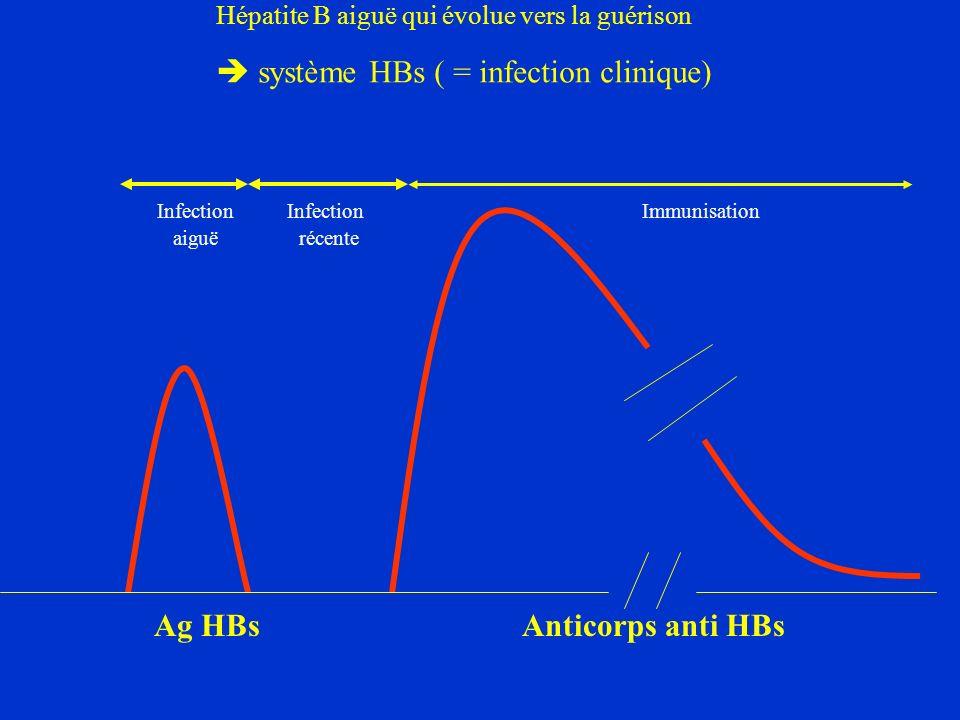 Hépatite B aiguë qui évolue vers la guérison
