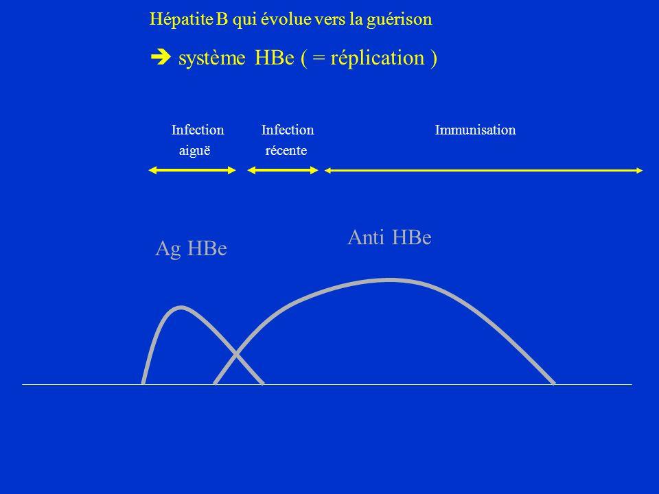 Hépatite B qui évolue vers la guérison  système HBe ( = réplication )