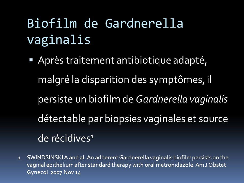Biofilm de Gardnerella vaginalis