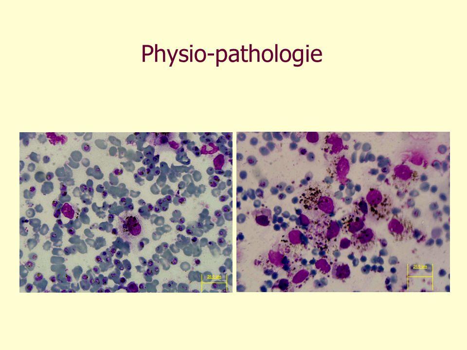 Physio-pathologie