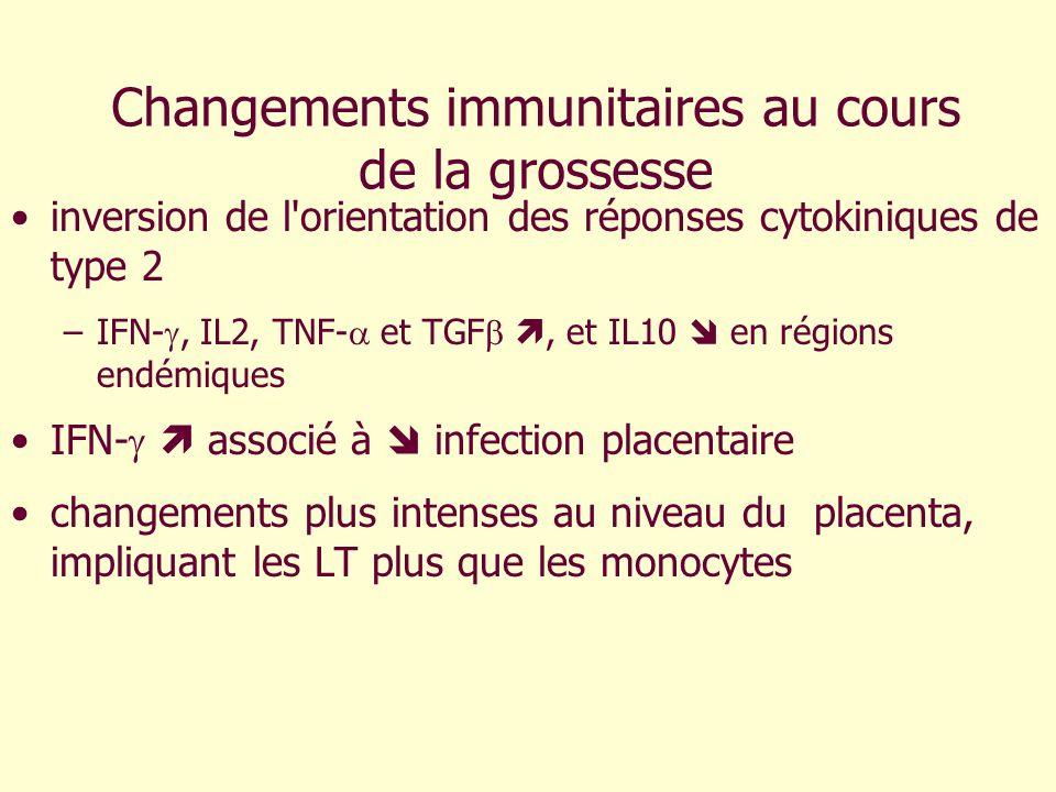 Changements immunitaires au cours de la grossesse