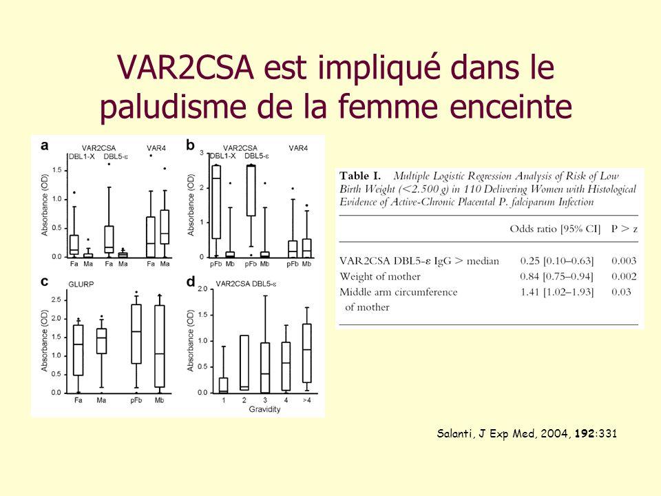 VAR2CSA est impliqué dans le paludisme de la femme enceinte
