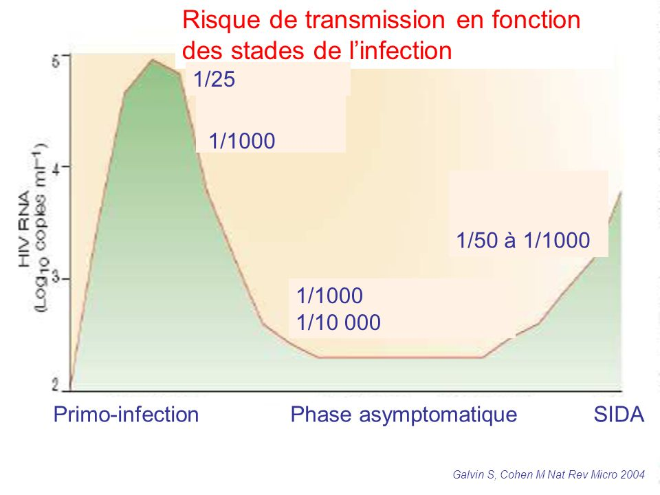 Risque de transmission en fonction des stades de l'infection