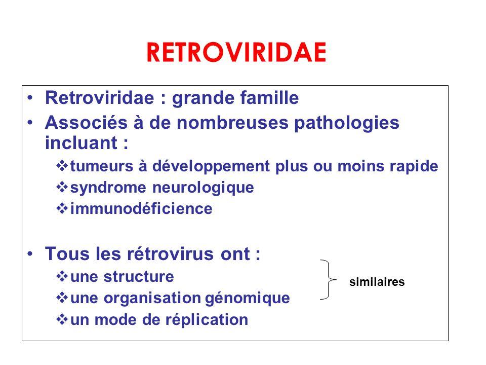 RETROVIRIDAE Retroviridae : grande famille
