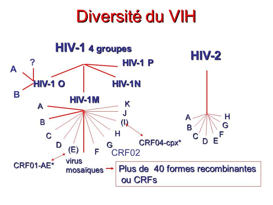 Diversité du VIH HIV-1 4 groupes HIV-2 HIV-1 O HIV-1M HIV-1N