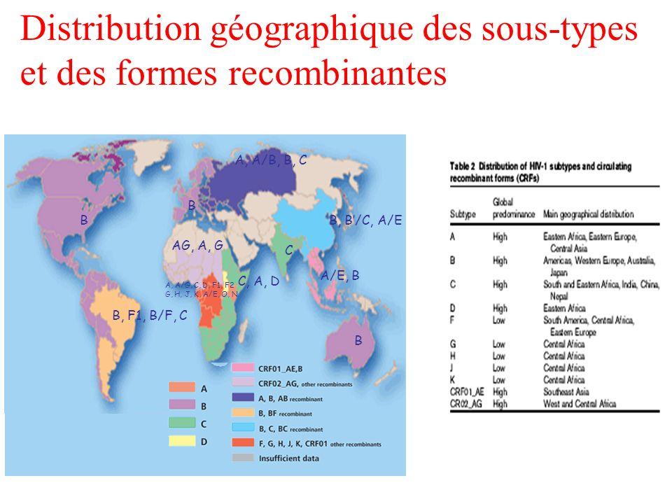 Distribution géographique des sous-types et des formes recombinantes