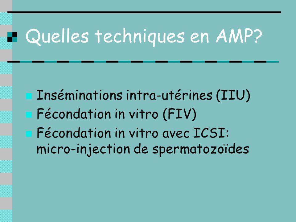 Quelles techniques en AMP