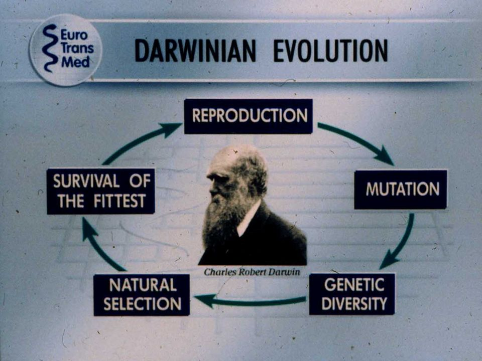 Slide 32 recalls the concept that mutation of resistant mutants and natural selection belongs to the Darwinian evolution.