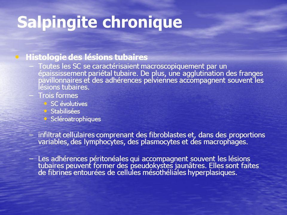 Salpingite chronique Histologie des lésions tubaires