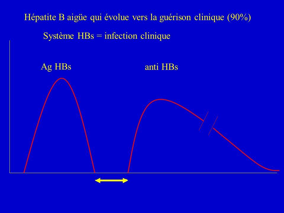 Hépatite B aigüe qui évolue vers la guérison clinique (90%)