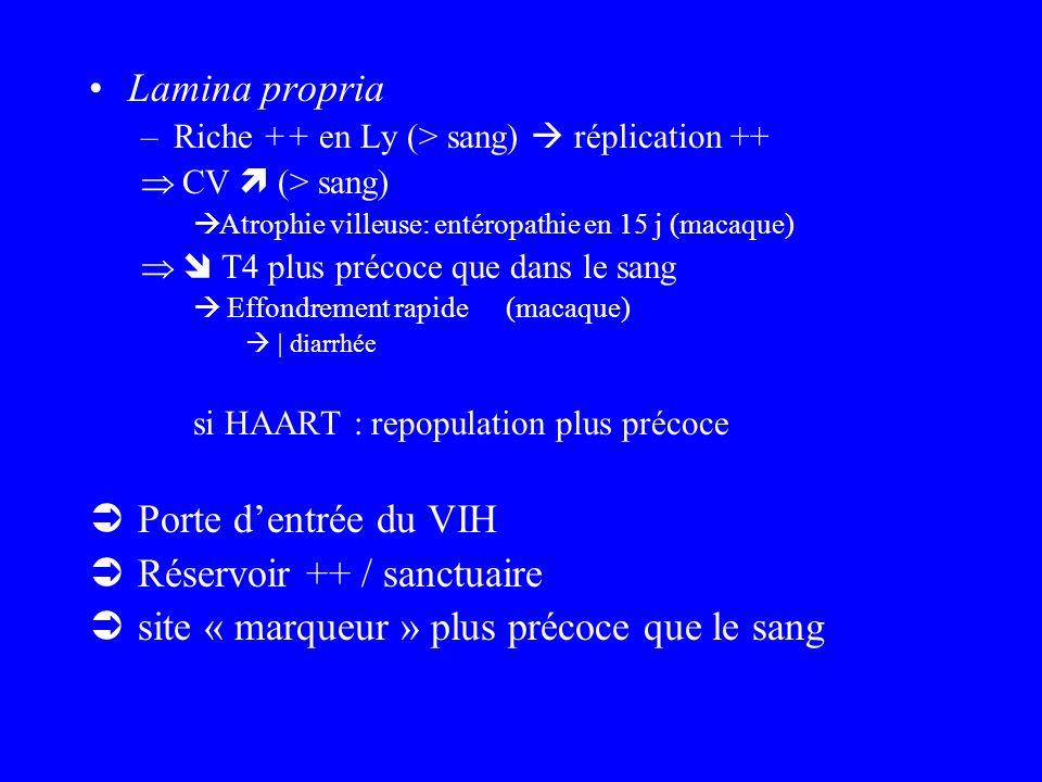 Réservoir ++ / sanctuaire site « marqueur » plus précoce que le sang