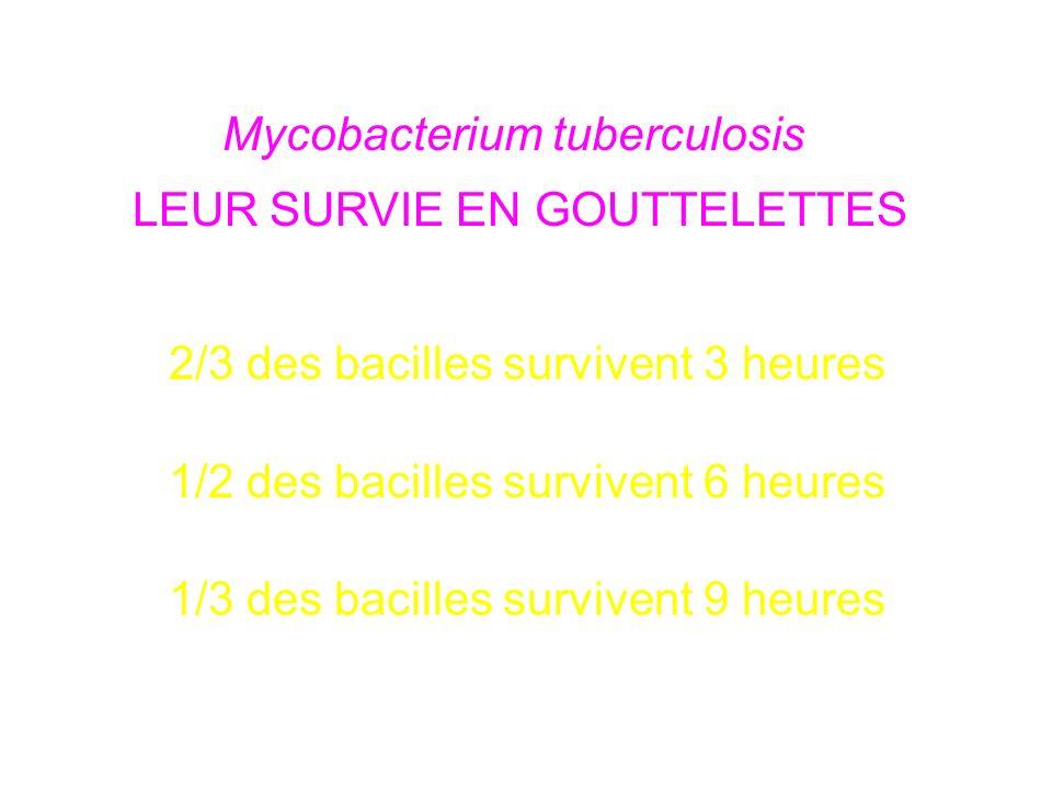 Mycobacterium tuberculosis LEUR SURVIE EN GOUTTELETTES